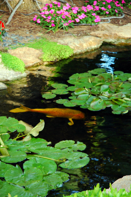 SRF Gardens courtesy wonderlane